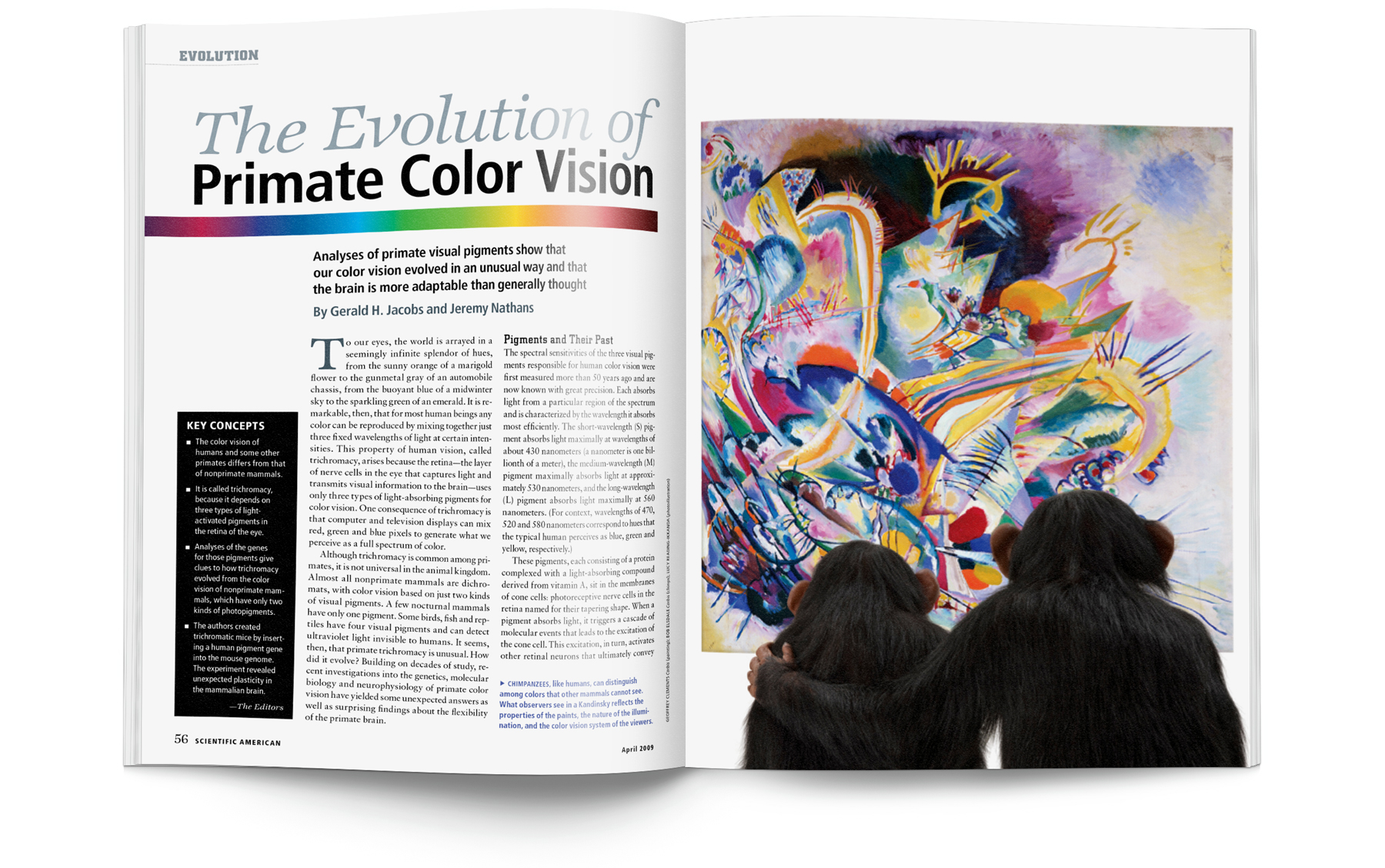 Color vision art - Project Design And Layout Article Photo Composition Of Opener Illustration Commission And Art Direct Eyeball Diagram Second Spread Illustrate Simple